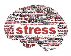 Kurs för stressade